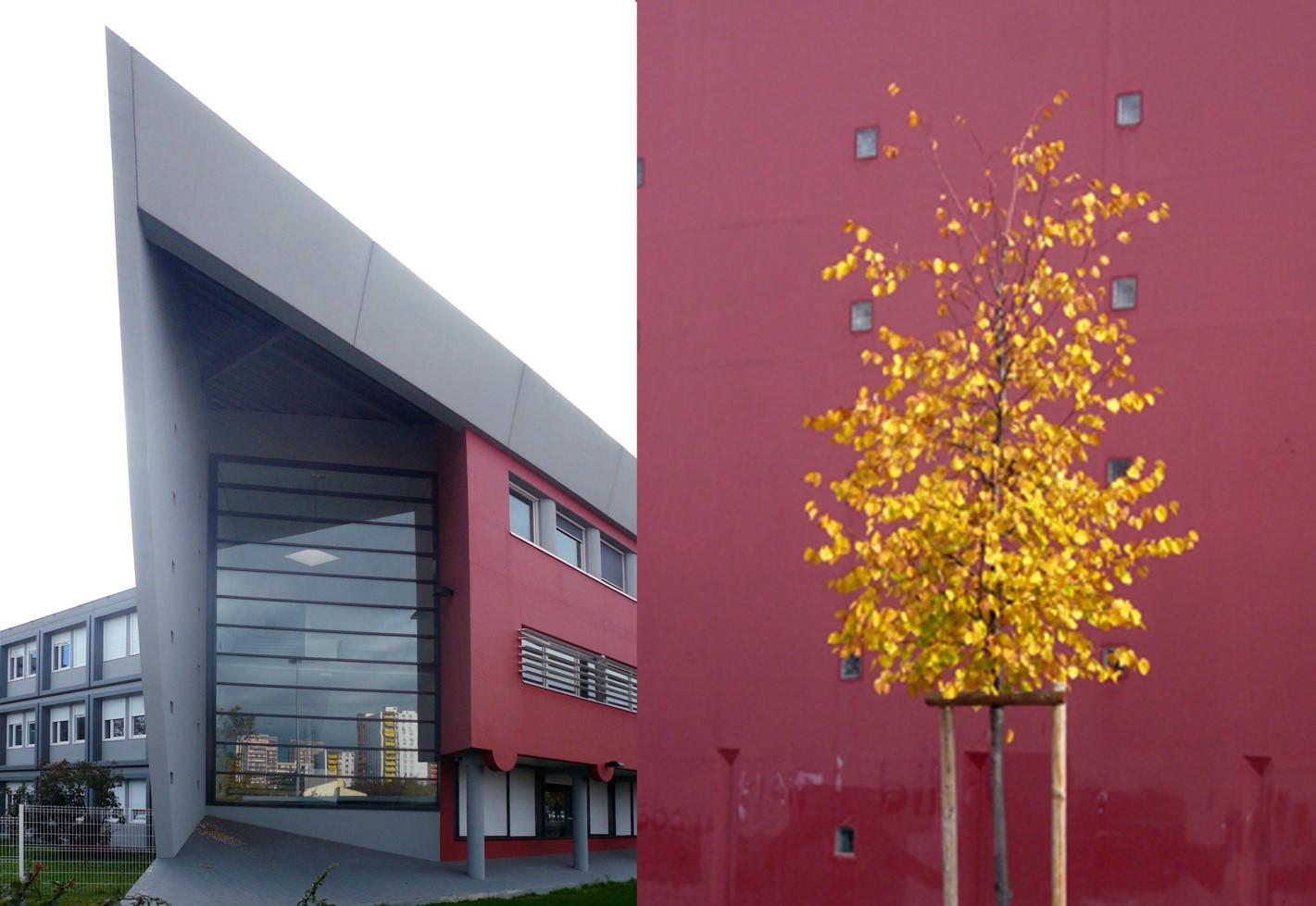 Collège Camus